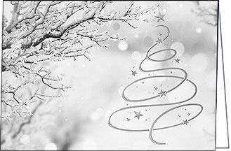 Weihnachtskarten Exklusiv.Weihnachtskarten Der Besonderen Art Die Weihnachtskarte